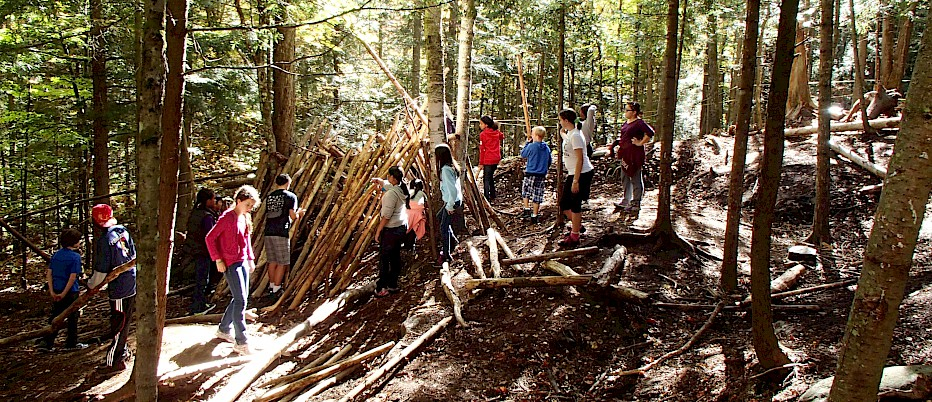 Shelter Building is fun!